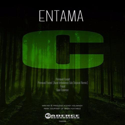 Entama - Soul Essence (Cadence Recordings [CAD035])