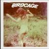BIRDCAGE - You, My Heavy Star (Radio Edit) - MP3 - 14/10