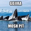 Download Vocal Cover : Gojira - The Heaviest Matter Of The Universe