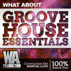 Groove House Essentials [Dannic, Dyro, Axwell style Kits, 550+ Drum & Bass Samples / Loops, Presets]