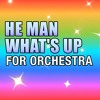 4 Non Blondes 'What's Up' (He Man 'What's Going On') For Orchestra