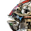 Cyborg Fish