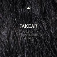 Fakear - Silver (Ft. Rae Morris) (Pedram Remix)