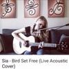 Candice Sand - Bird Set Free (Sia - Live Acoustic Cover)FREE Download