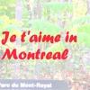 Je t'aime in Montreal by Shira Katz singer: Shera Shakera