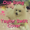 Our Song : Taylor Swift (Cover)