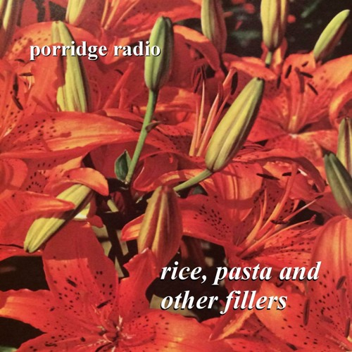 Porridge Radio - Walking The Cow (Daniel Johnston Cover) (Rice, Pasta And Other Fillers)