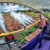 Andrew Rayel - Live @ Tomorrowland 2016