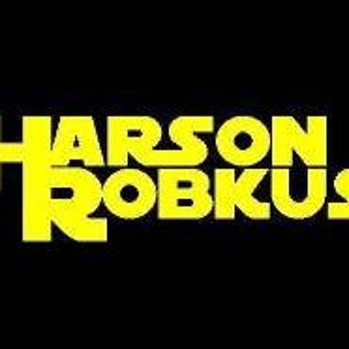 Harson Robkus - Seagull