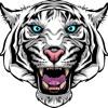 I Am Wildcat