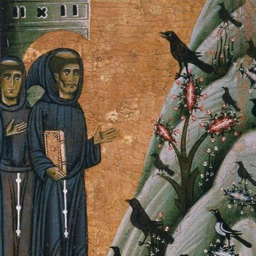 preaching (birds)