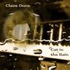 (Unknown Size) Download Lagu Claire Dunn - Cat In The Rain Mp3 Gratis