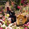 Malk - DJ Khaled Nas Album Done Beat (Malkmix) Produced By VC Da Menace