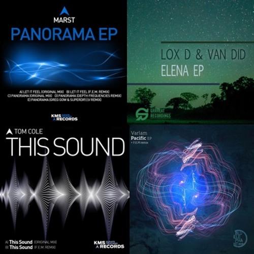 FEM - Remix Tracks