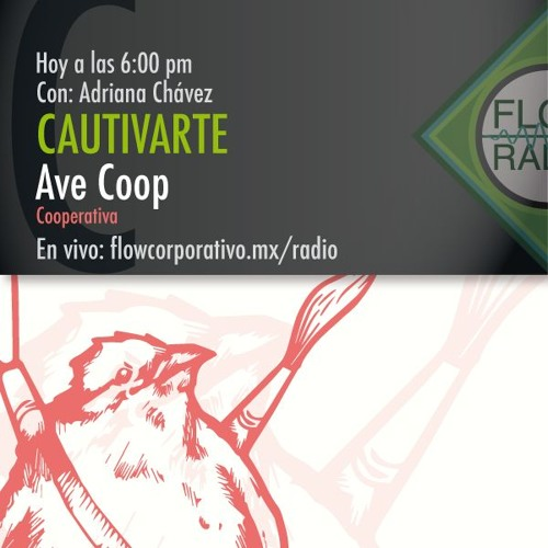 CautivArte 038 - Ave Coop, cooperativa.