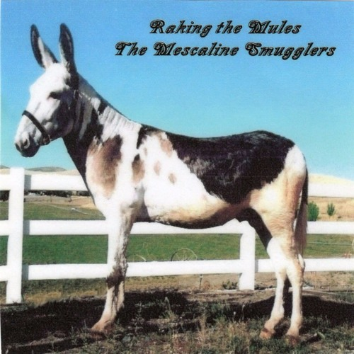 The Price of Love - The Mescaline Smugglers