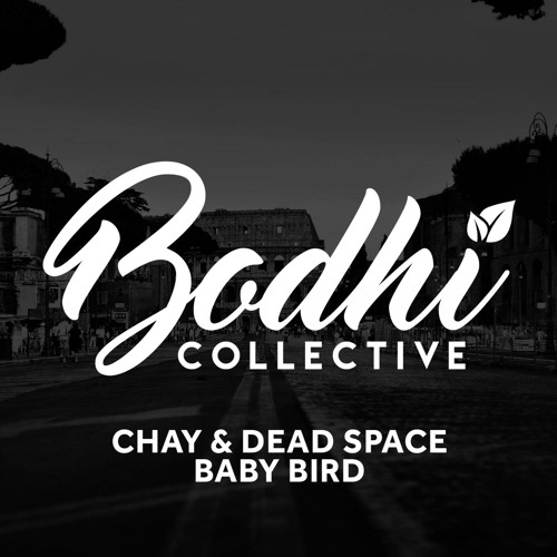 Chay & Dead Space - Baby Bird (Original Mix)
