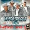 Grupo Bronco el gigante de America