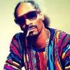 Snoop Lion feat. Drake & Cori B - No Guns Allowed (Deep2Tech Edit) ...