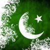 Tere Bina Dil Na Lage Pakistan.mp3