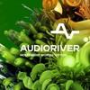 Delaplaya @ Audioriver festival 2016 (Sun/day)