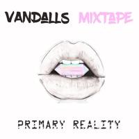 Vandalls - Primary Reality Vol. 1 (Kae & Ashes)