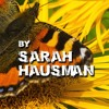 Painted Ladies by Sarah Hausman