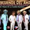145. - Los - Peregrinos - Del - Amor - Ahora - Te - Vaz - Remix - Dj - Raya - Vercion - 2