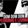 Mc Pedrinho E MC Livinho