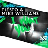 Tiesto Mike Williams I Want You Album Cover