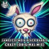 James Cozmo & Black Rabbit - Crazy (Original Mix)  [Free Download]