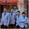 House Of The Rising Sun - The Animals - Sepp Angel Cover