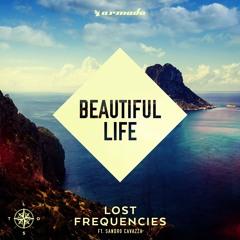 Beautiful Life [Feat. Sandro Cavazza]