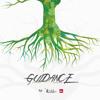 Guidance by DJ Luiz-Dubs