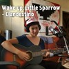 Wake up, Little Sparrow + Clandestino (mashup/cover)by Sara and Cristo