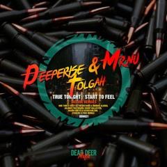 Deeperise & Mr.Nu, Tolgah - True Tonight (The Distance & Riddick Remix)