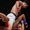 Irish martial arts body opposes recognition of MMA