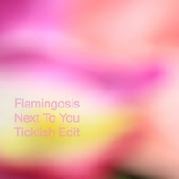 Flamingosis - Next To You (Ticklish Remix)