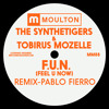 Premiere: The SyntheTigers & Tobirus Mozelle - F.U.N (Feel U Now) (Pablo Fierro Remix)