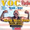 VOC Radio Aug 7 2016 Rocco