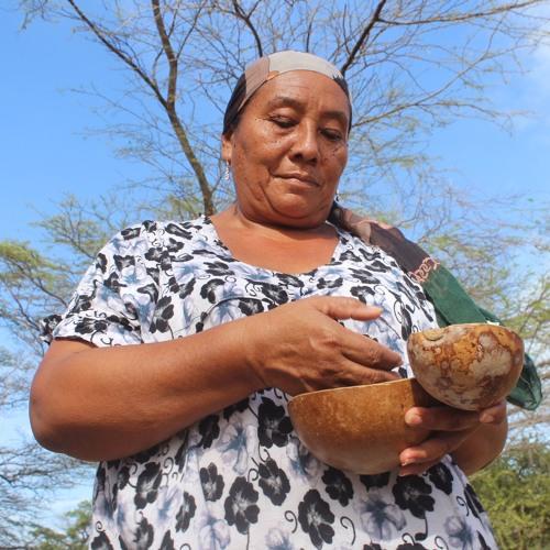 Visita a Majali - Escuela Comunicación Wayuu