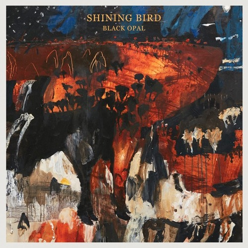 Shining Bird 'I Can Run'