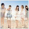 Labrador Retriever AKB48