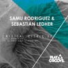 Samu Rodriguez & Sebastian Ledher - Critical Citric (Podime Remix)