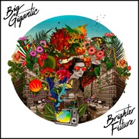 Big Gigantic - Got The Love (Ft. Jennifer Hartswick)