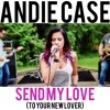 Send My Love To Your New Lover Mp3