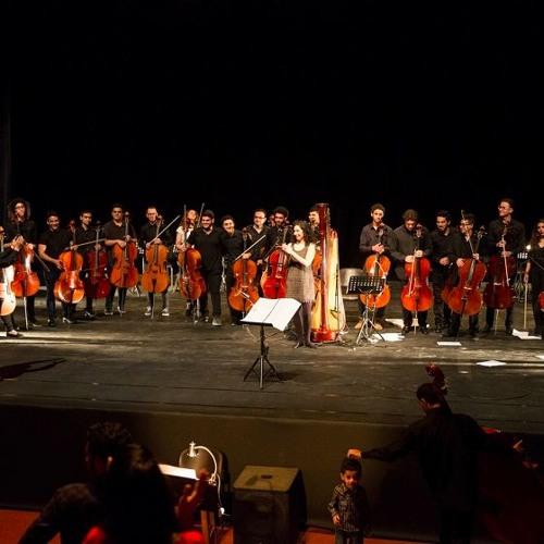 """Bahaa El ANSARY - LOST - Solo Harp & 30 Cellos """"surround-sound cellos"""" - D-CAF Festival 2016"""