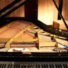 Prepared Piano And Toy Piano - Margaret Leng Tan