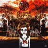 DatPhoria X Elegant Pumpkin - Final Words