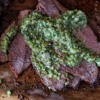 Cooking with Fire: California Tri-Tip